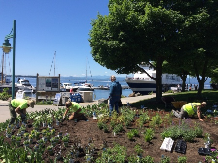 Burlington_Waterfront_Gardens2017-01
